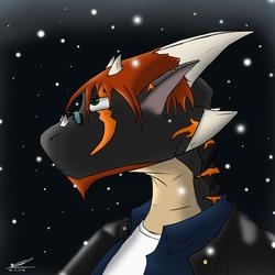 Winter 2013 Icon