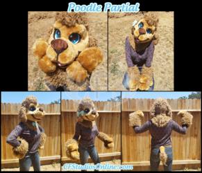 Poodle Partial Auction!