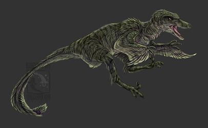 Charlie Raptor