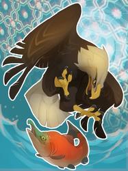 Bald Eagle + Sockeye Salmon