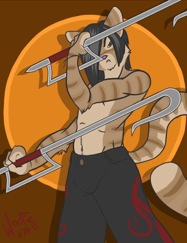Ninja Cataka