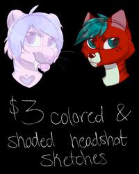 cheap same day headshots (2/4 slots open)