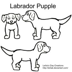 Labrador Pupple Contest Lineart