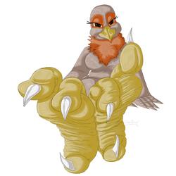Birdie Sole Tease