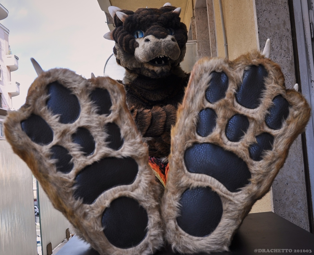 Drachetto's new indoor footpaws