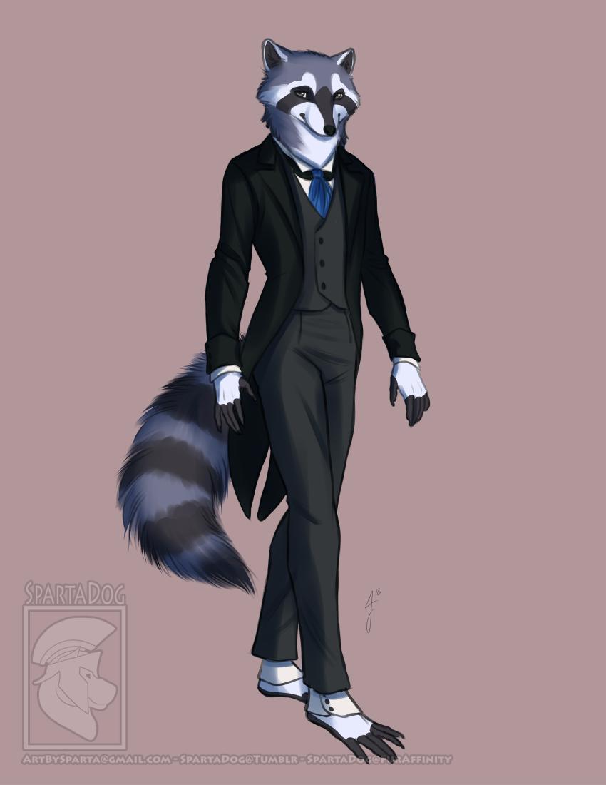 Classy Raccoon
