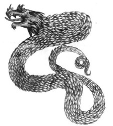 Old Dragon Drawing