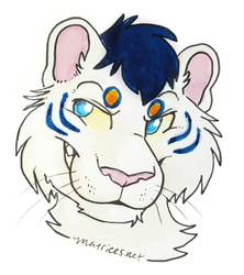 [AF] Headshot - By Matrices - Inara