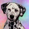 avatar of bizzl