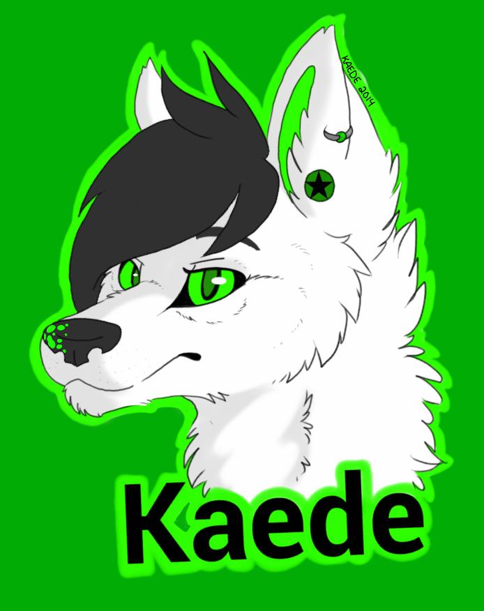 Kaede Headshot Badge