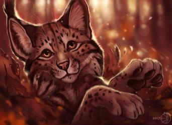 Atumn lynx