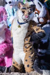 FurDU 2017: Boost Cheetah 1