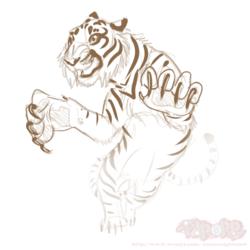 Sketch A Day - Tiger