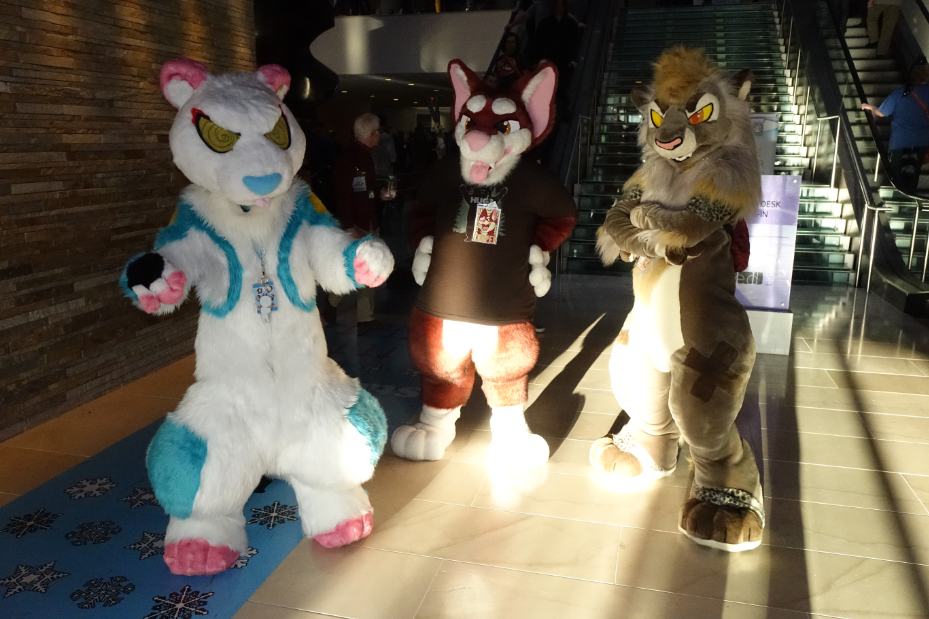 Featured image: MFF 2014 bros