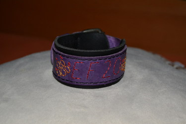 3 of 3 bracelets of the EF 20 (Furpanth)