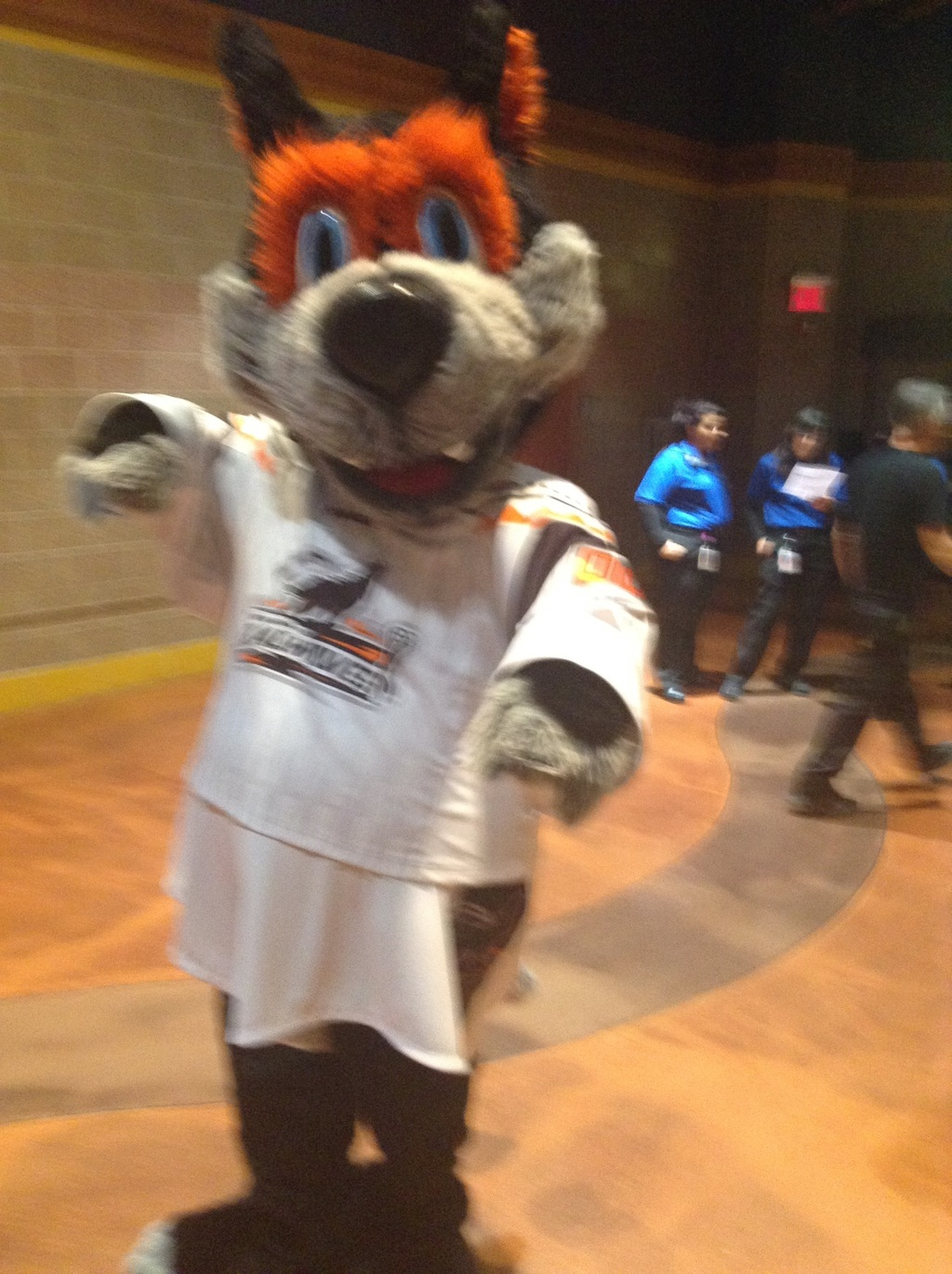 Hunter the New England Black Wolves Mascot