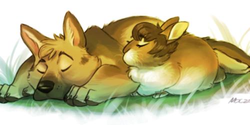 Loafing Around