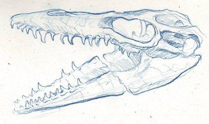 Mosasaur