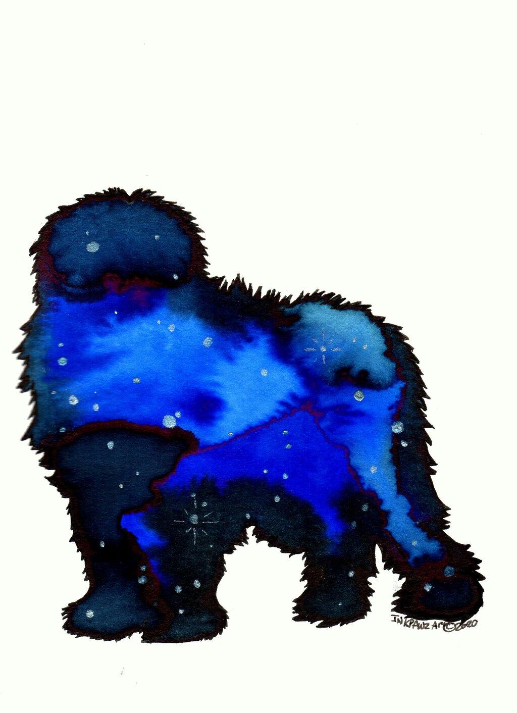 Galaxy Old English Sheepdog