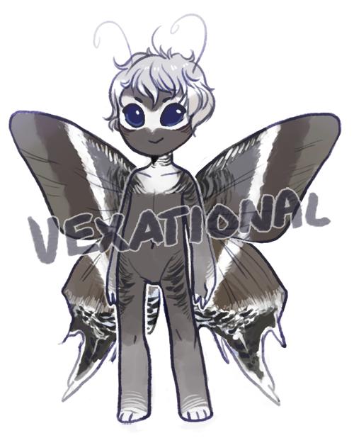 vexational - custom moth