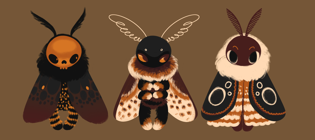 Moths batch