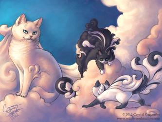 Cumulous Cats - Morning Storm