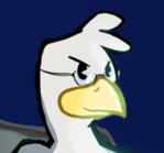 [C] Gray Hat, Grayer Bird