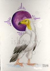 Tome: Egyptian Vulture