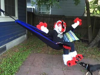 I'm on a hammock!