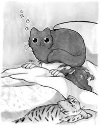 College fanzine 4: Cats