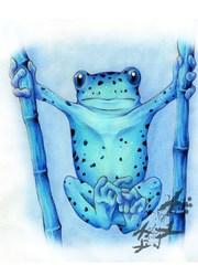 Poisoned Dart Frog