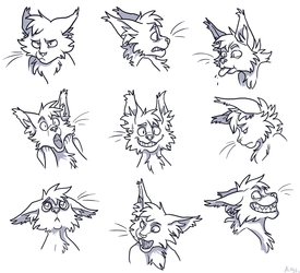 Bencoon Expressions