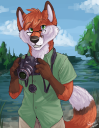 Commission - SwiftFoxFire