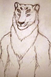 Sketch of Bri