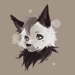 [AT] Kibawolf99
