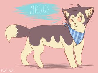 Argus meow
