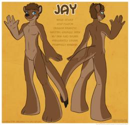 [C] Jay Ref Sheet