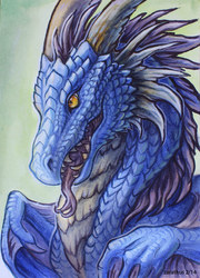 Dragon bust commission example