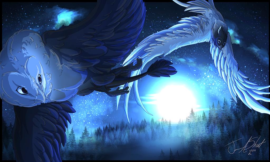 Midnight Flight - Illustration