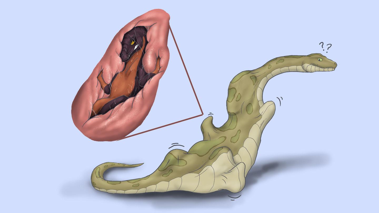 Vore Snake