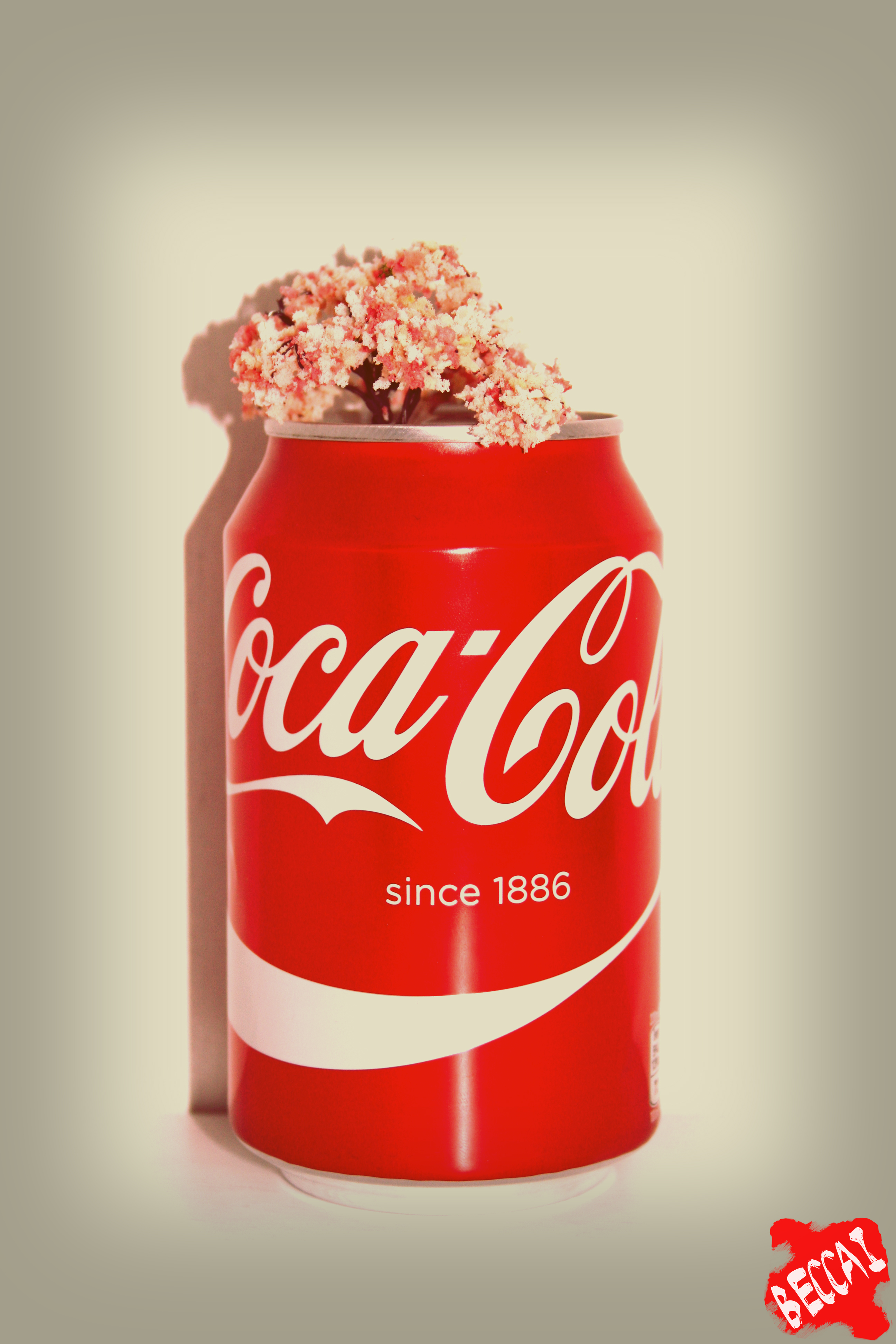 coca cola submission The coca-cola company appreciates receiving your suggestions we have a policy that prevents us from considering ideas related to advertising, promotions and formula modifications to any of our existing products.