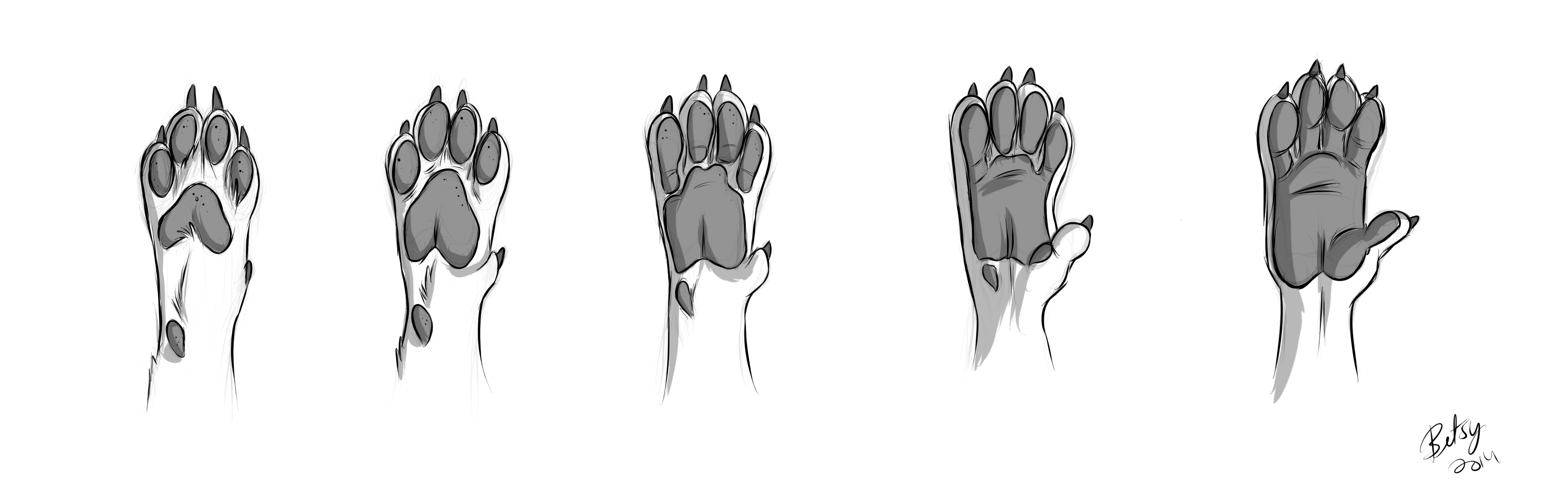 Paw To Hand Tf Weasyl