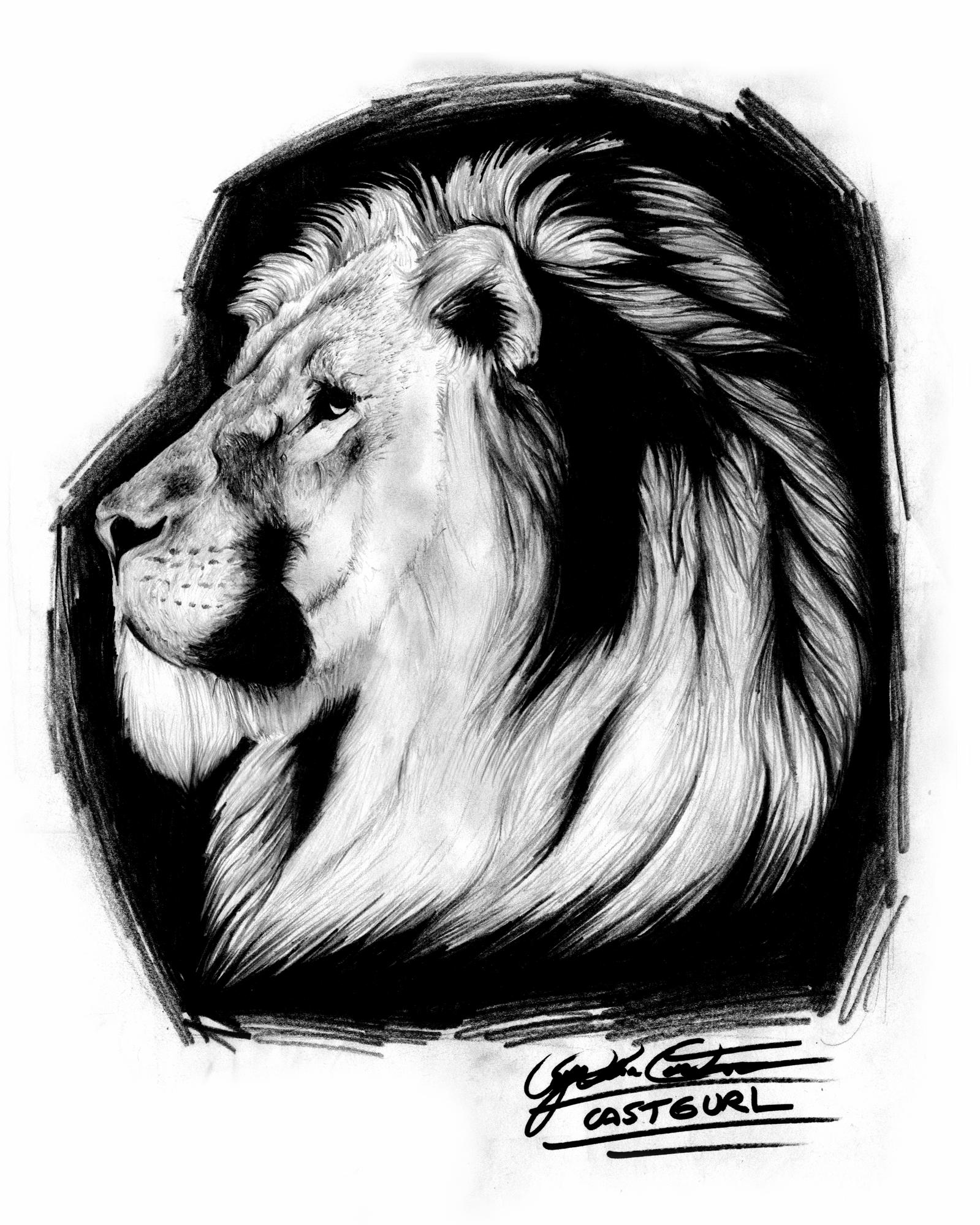Lion pencil drawing weasyl
