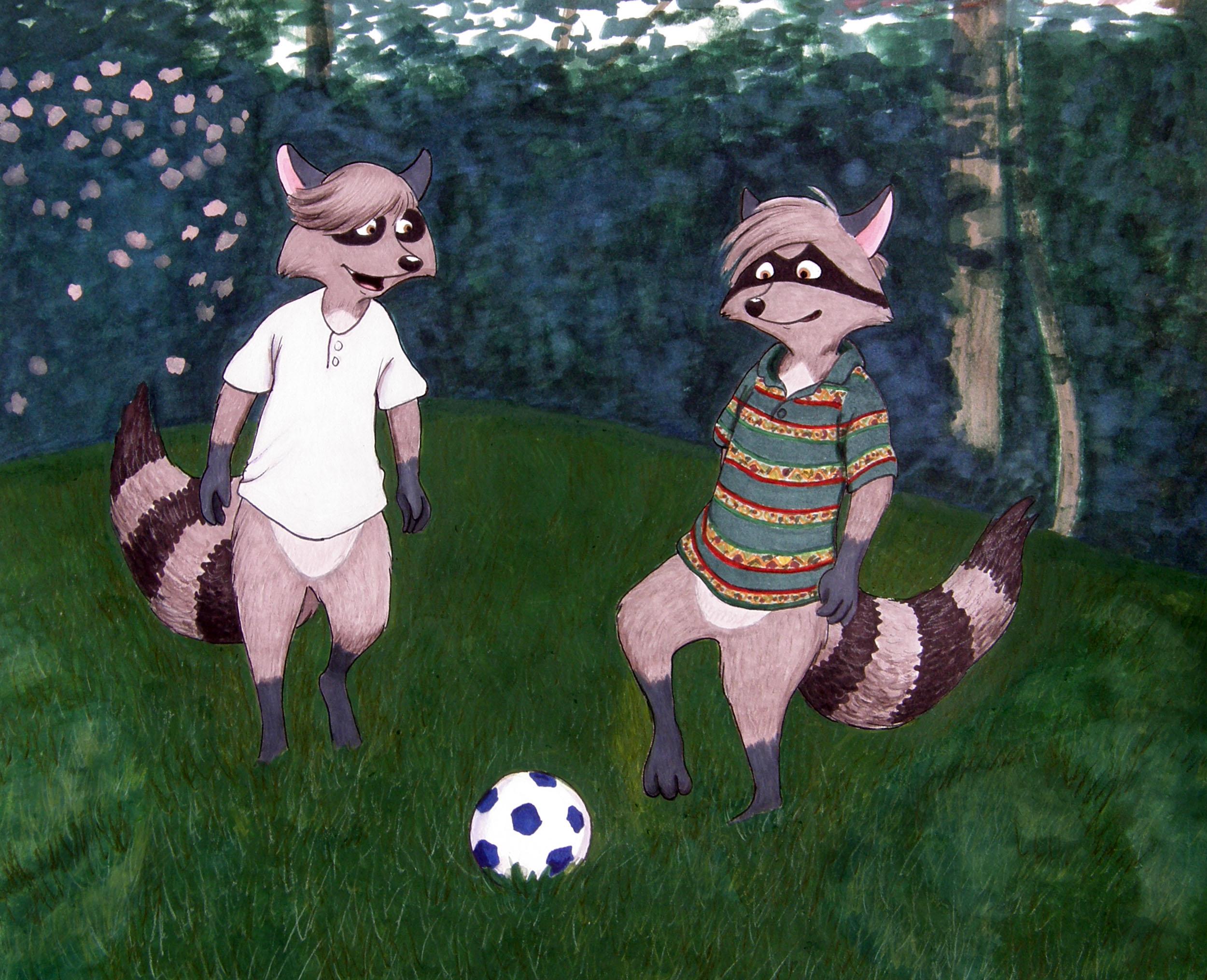 backyard soccer at dusk by christaphorac