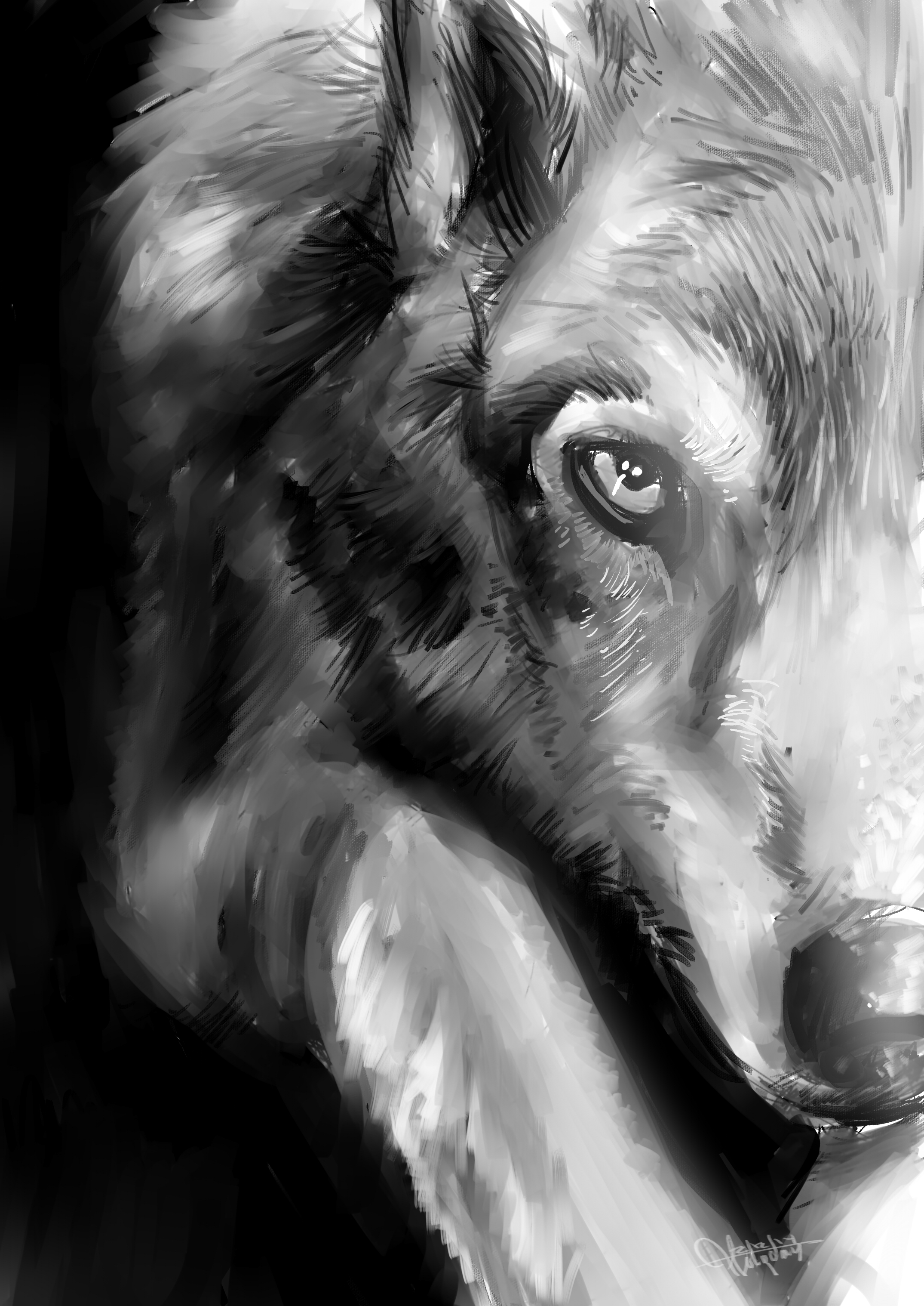 Black and white wolf painting