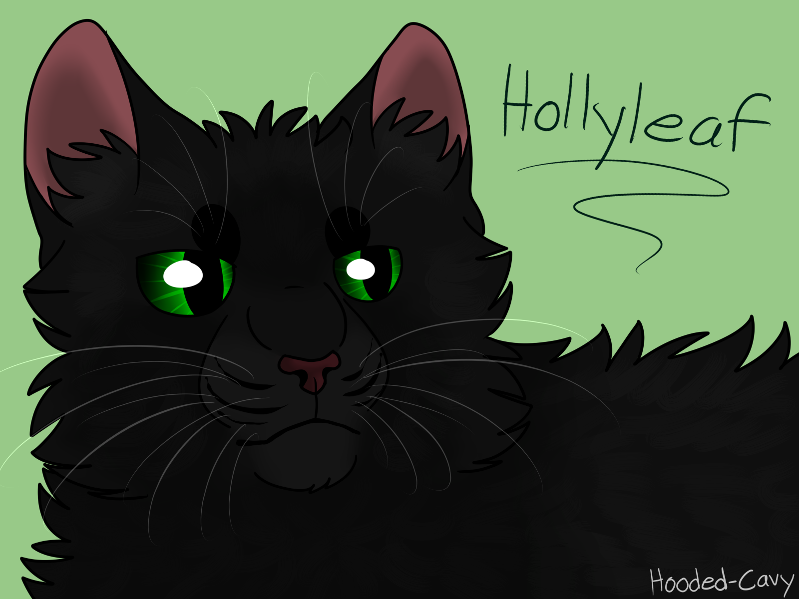 Hollyleaf By Hooded Cavy