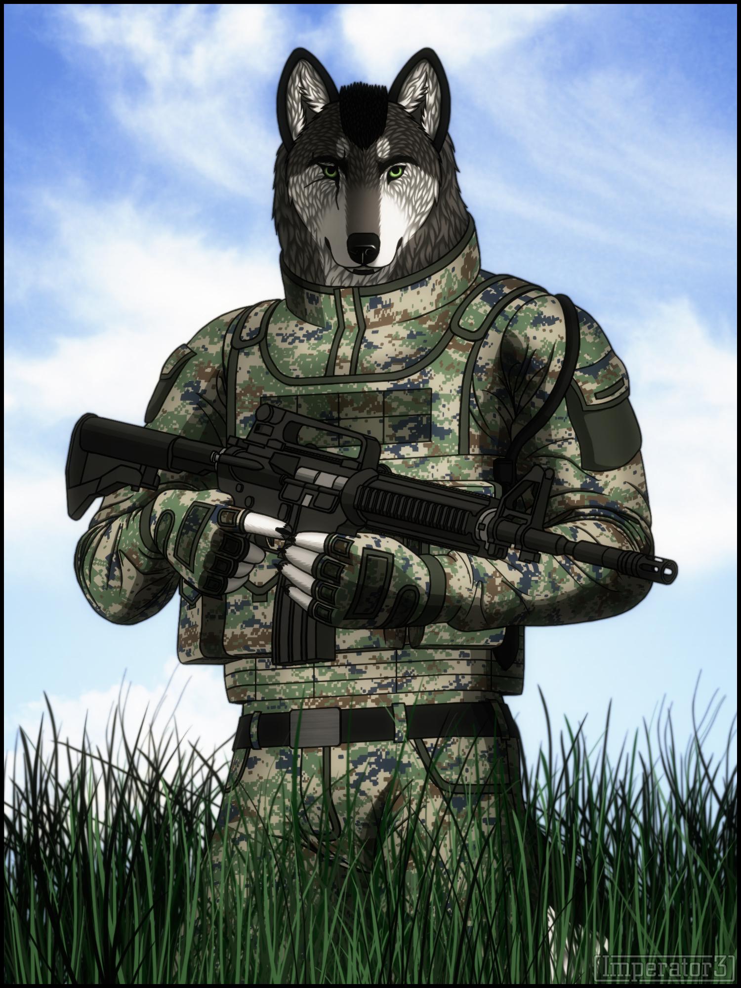 картинки военные животные имеет