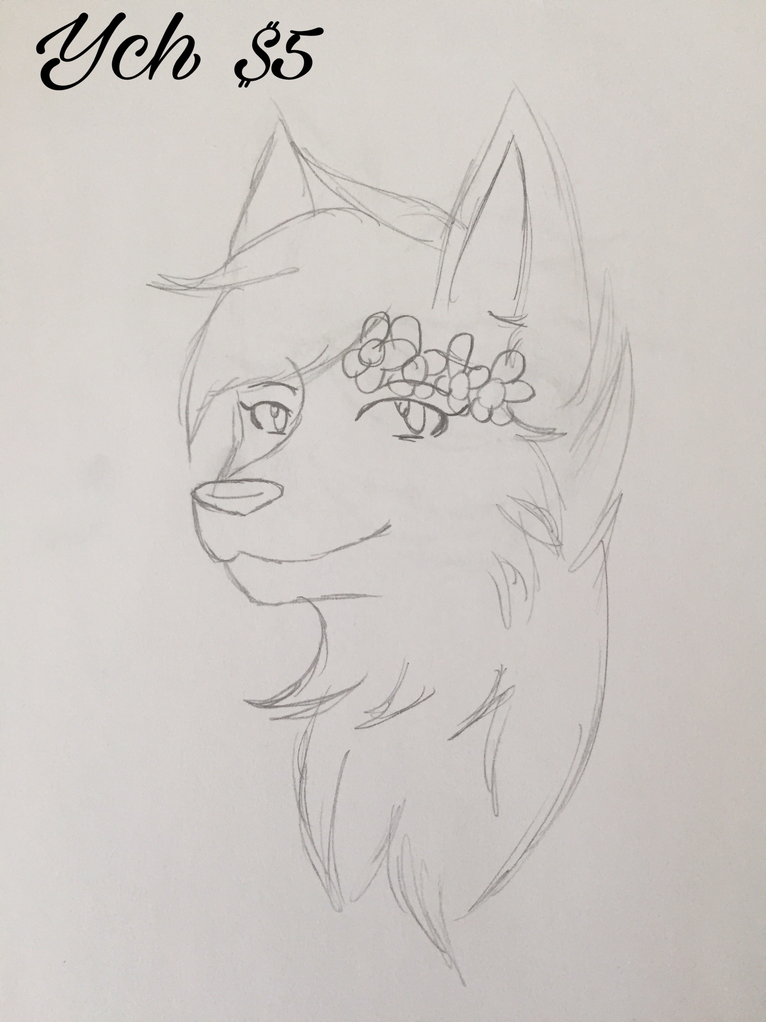 Ych Flower Crown Weasyl