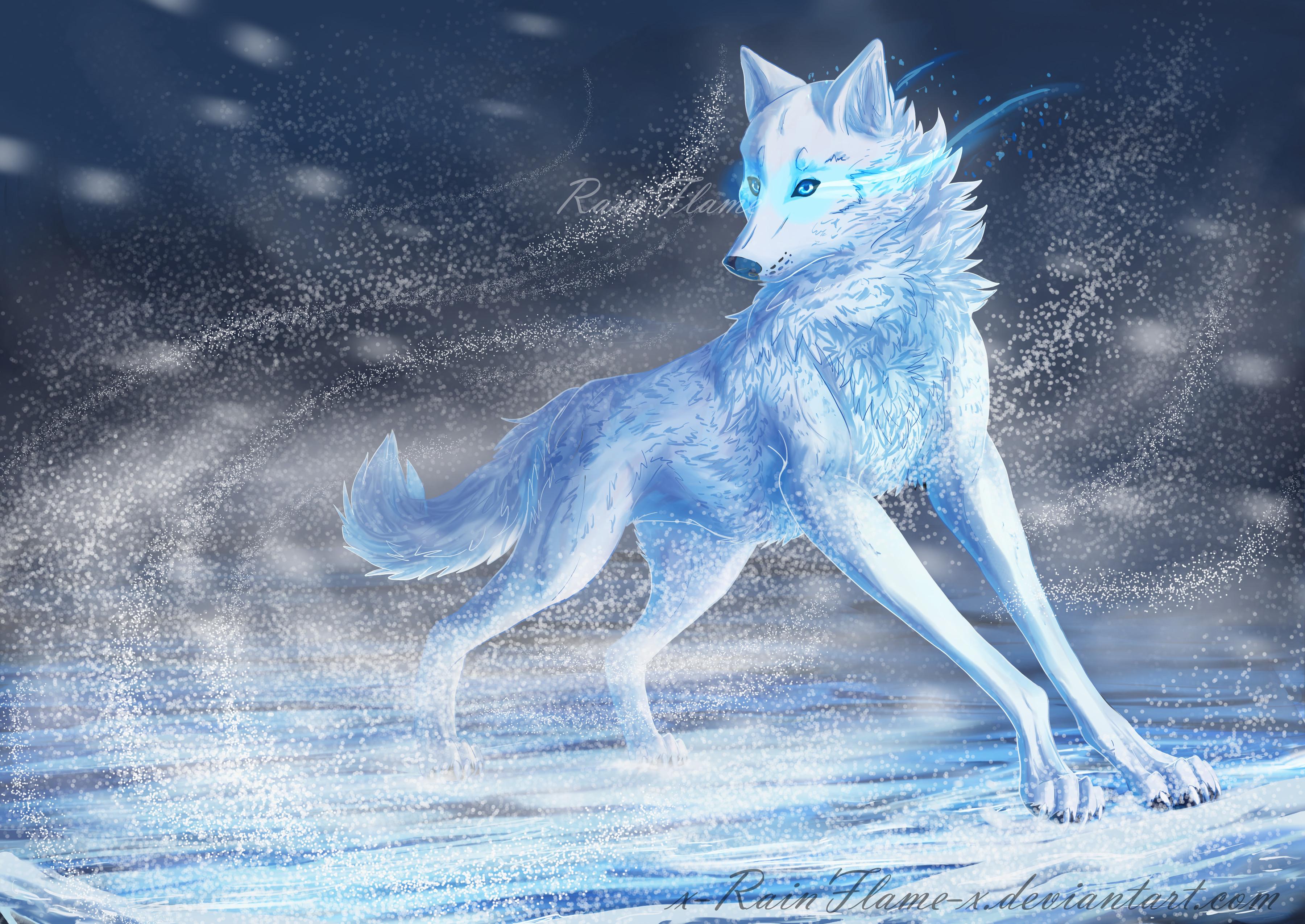 фото волк воздуха картинки убрать сообщение