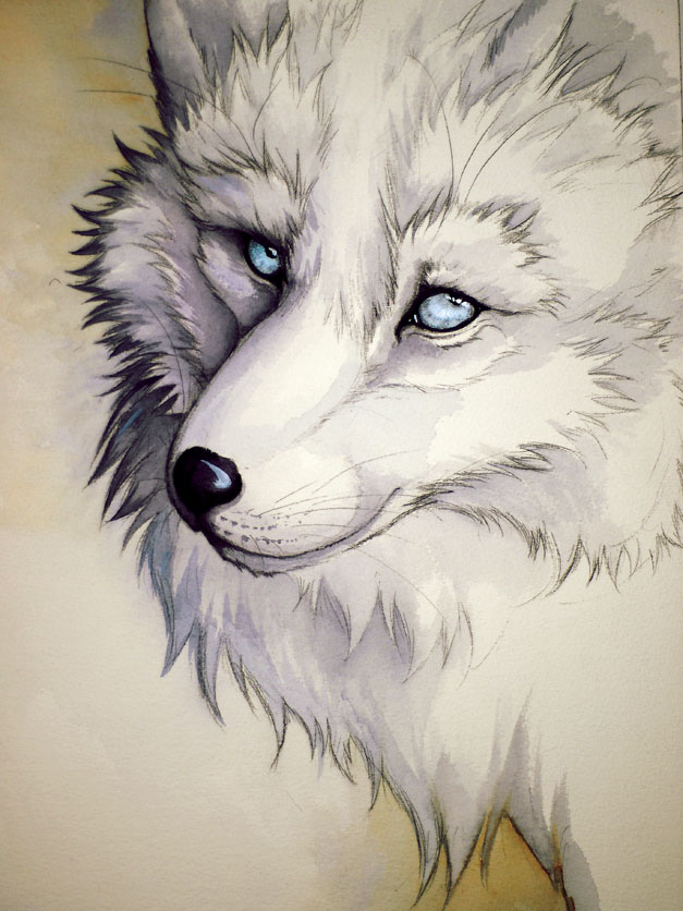 Татуировка волк - Значение, Фото, Эскизы Тату волк